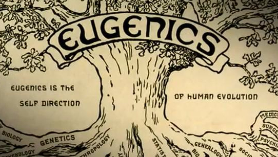 Eugenics in Switzerland Image