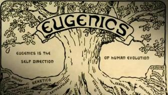 Eugenics in Switzerland Image